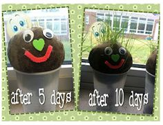 Looking forward to our kids class and craft tomorrow about soil! We'll be making a pot person (not exactly like this) with plants for hair!