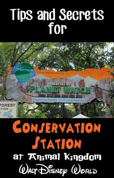 Tips and Secrets for Conservation Station in Walt Disney World's Animal Kingdom.