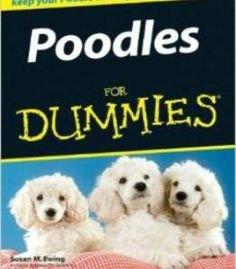 Homemade dog treats and homemade dog food pdf food preserving poodles for dummies by susan m ewing pdf forumfinder Image collections