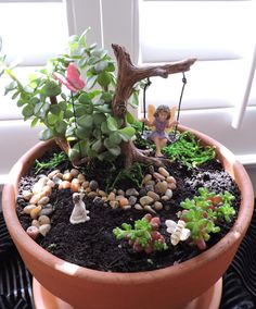 *PLEASE NOTE* Fairy gardens are only available for local delivery or pick up in Sarasota & Manatee counties in Florida. Due to the delicate