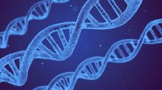 Epigenetics: The Power to Take Control of Your Genes is within You