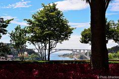 A bridge too far, @ Palácio de Cristal - Porto