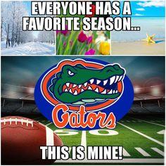 Fla Gators, Florida Gators Softball, College Football Players, Football Love, Football Stuff, Florida Gators Wallpaper, Gator Game, Dream School, Florida Girl