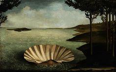 Resultado de imagem para concha botticelli