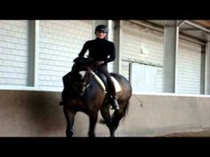 Natasja & Windsor, training with Joao Pedro Rodriques, head of the Portuguese school of Equestrian Art.
