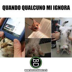 Pinterest: Paoletta_ ♡✨