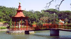 Bacalhôa Buddha Eden Gazebo, Buddha, Portugal, Outdoor Structures, Nooks, Fotografia, Pictures, Kiosk, Pavilion