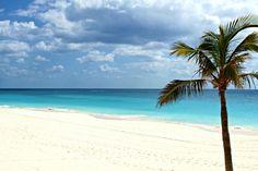 hochzeit hochzeitreiseziele Bermudas Wasser