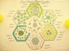 Plants that attract bees. #bee #garden