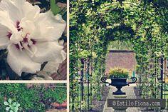Gardening.  #homedecor #garden