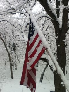 Classic winter flag, snow storm, winter wonderland Eagle River WI