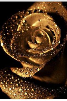 Moissanite engagement ring white gold Vintage Diamond wedding ring set Dainty an. Moissanite engagement ring white gold Vintage Diamond wedding ring set Dainty antique Bridal Half e Juwel Tattoo, Austin Rosen, Vintage Rosen, Gold Aesthetic, Anniversary Gift For Her, Shades Of Gold, Rose Wallpaper, Ring Verlobung, Vintage Diamond