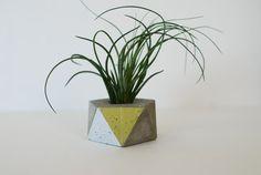 Icosahedron Concrete Planter Sacred Geometry  Zen by AnsonDesign