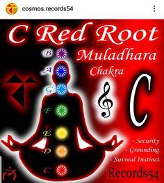 C Red Root Muladhara Chakra (Security-Grounding-Suvival Instinct)