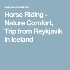Horse Riding - Nature Comfort, Trip from Reykjavik in Iceland