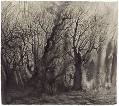 Path by Elina Merenmies Paths, Contemporary Art, Drawings, Illustration, Pictures, Branches, Inspiration, Artworks, Trunks
