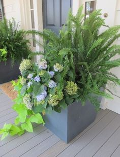 May usually has me planning and gathering gardening ideas for the two container's that flank my front door on my porch. When I ran across th...