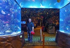 Rainforest Cafe at Opry Mills | Travel Quest - US Road Trip and Travel Destinations