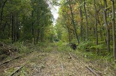 Center valley - before - Abandoned railway - Wikipedia