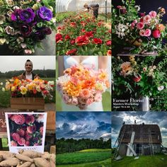 lynnvalestudios's best nine on Instagram in 2019 | 2019 Bestnine #dahlias #flowerfarmer #farmerflorist #lynnvaleweddings #lynnvaleworkshops #virginia #barn #ranunculus #anemones #poppies #mothersday #bridalbouquet Anemones, Dahlias, Ranunculus, Top 10 Instagram, Instagram Accounts, Flower Farmer, Best Nine, Poppies, Virginia