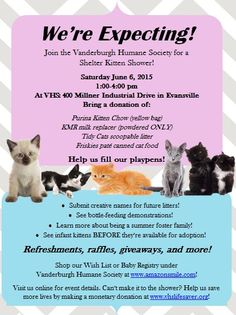 throw a kitten shower to get donations of funds and
