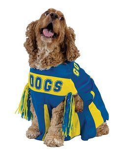 Cheerleader Hundekostüm blau-gelb. Aus der Kategorie Karnevalskostüme / Hundekostüme. Damit Ihr Vierbeiner an Karneval die Parade auch so richtig anfeuern kann, sollten Sie ihm dieses großartige Cheerleader Hundekostüm schenken. Das außergewöhnliche Hundeoutfit wird garantiert dafür sorgen, dass Ihr Fiffi bekannt wird wie ein bunter Hund. ,-)