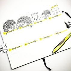 Bullet journal weekly layout, cursive dally headers, flower drawings. | @rainy.mondays