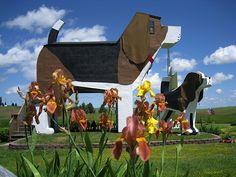 Dog Bark Park Inn | Cottonwood Idaho
