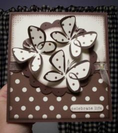 simple color combo, Bold Butterfly set