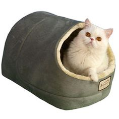 @Overstock - Color: Sage Green & Beige  Materials: Faux suede, faux fur  Waterproof, non-skid bottomhttp://www.overstock.com/Pet-Supplies/Armarkat-Sage-Green-Cat-Bed/6148238/product.html?CID=214117 $24.99