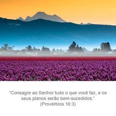 """"""" Entrega ao Senhor as tuas obras, e teus desígnios serão estabelecidos."""" Provérbios: 16. 3"""