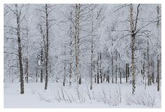 Danny Greens Photography of Finland check out his website, awesome...