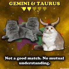 & :( So true! My ex girlfriend was a Taurus Dangerous combination Aries And Gemini, Taurus Love, Gemini Zodiac, Sun Sign Moon Sign, Moon Signs, Birth Order, My Ex Girlfriend, Chinese Astrology, Astrology Numerology