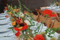 The Monkey Flower Group Web Log: A Handfasting Wedding