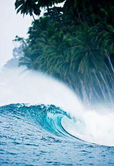 Paradies surf | @SingleFin_