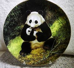 """Bradford Exchange Co. ~ Last Of Their Kind: The Endangered Species Collector Plate ~ """"Giant Panda"""". Panda Art, Panda Love, Asian Elephant, Siberian Tiger, Snow Leopard, Endangered Species, Happy Mothers Day, The Ordinary, Polar Bear"""