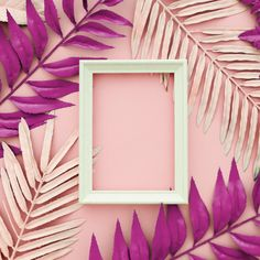 Pink leaves dyed on pink background with a white frame Free Photo Cute Pink Background, Flower Background Wallpaper, Sunflower Wallpaper, Cute Wallpaper Backgrounds, Flower Backgrounds, Pink Wallpaper, Cute Wallpapers, Poster Background Design, Background Designs