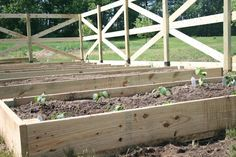 enclosed raised garden beds.