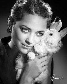 Marion #Cotillard par #Harcourt / french actress