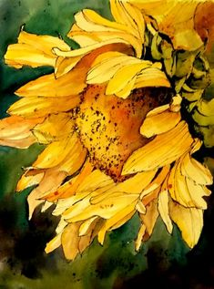 Watercolor Sunflower Greeting Card for Sale by Annemiek Groenhout Watercolor Pictures, Watercolor Tips, Watercolor Techniques, Watercolor Paintings, Watercolors, Watercolor Sunflower, Sunflower Art, Watercolor Flowers, Painting Inspiration