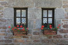 window boxes Flower Boxes, Flowers, Garden Windows, Window Boxes, Cottage Style, Gardens, Doors, Painting, Chalet Style