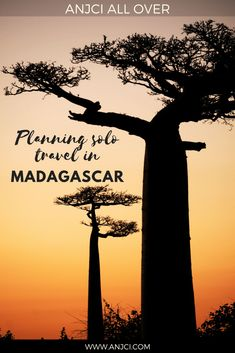 ANJCI ALL OVER | Planning solo travel in Madagascar #madagascar #travel