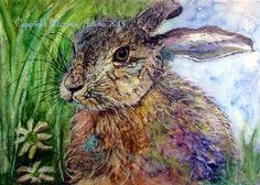 Jewelled Hare in Daisy Patch Beautiful Giclee by morenaartina, £26.54