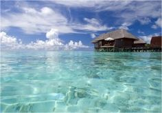 Going to the Maldives sometime...