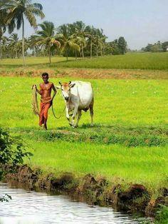 Farmer nd his soulmate...