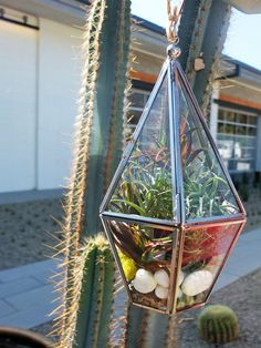 Urban Outfitters - Blog - DIY: Make Your Own Terrarium