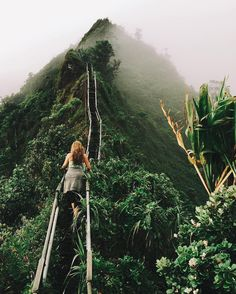"537 Likes, 34 Comments - Stamp Travel: Download Now! (@stamptravel) on Instagram: ""Stamp #626 - USA : Hawaii hiking  Haiku Stairs, this one is technically a hike you have to…"""