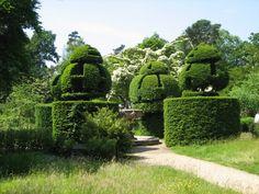 Regal yew topiary