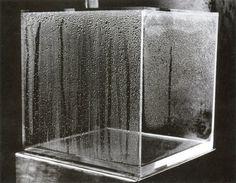 Hans Haacke condensation-cube 1965-2008, Bruce Nauman