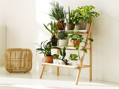 Indoor garden, I love it! Great for apartments #home